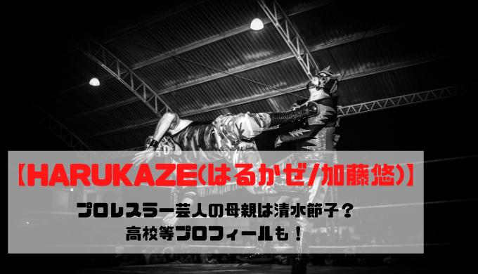 【HARUKAZE(はるかぜ/加藤悠)】プロレスラー芸人の母親は清水節子?高校等プロフィールも!